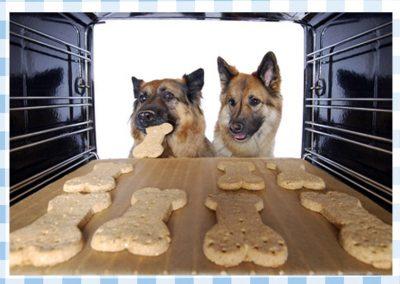 Hier geht's zum Rezept der Oster- Hunde-Guetzli